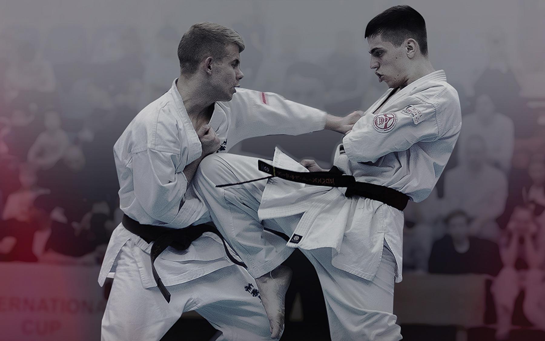Международный Кубок Содружества 2020 Федераций Киокушинкай каратэ