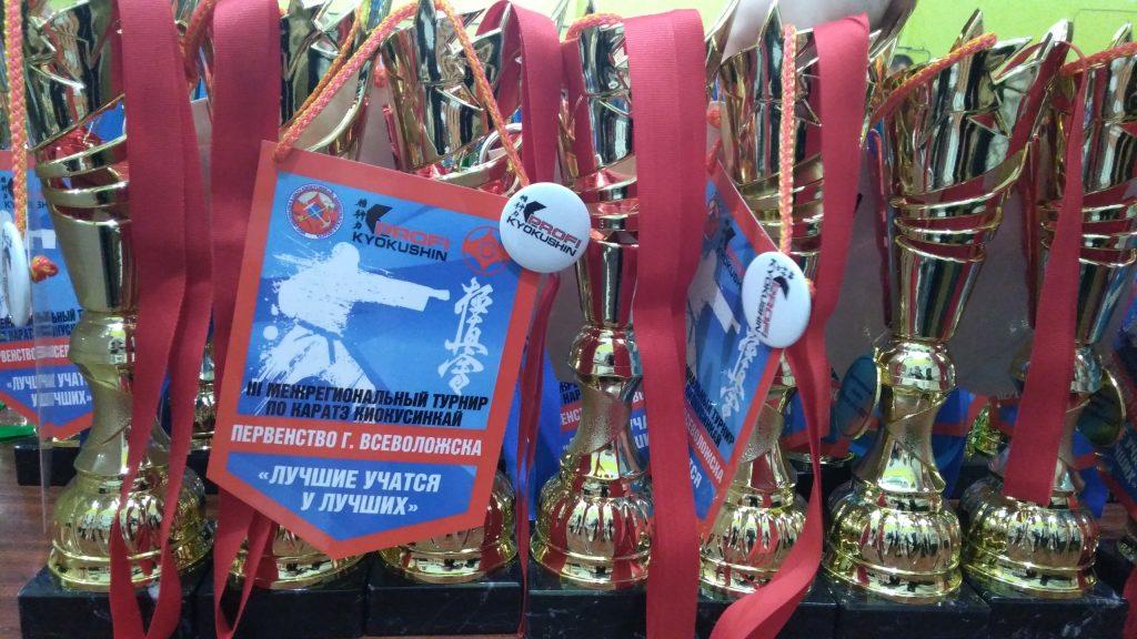 Межрегиональный турнир по каратэ киокусинкай