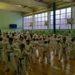 сборы по киокушинкай каратэ в г. Красноярске