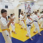 учебно-тренировочные сборы каратэ